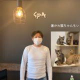 東京 保護動物施設 SPA